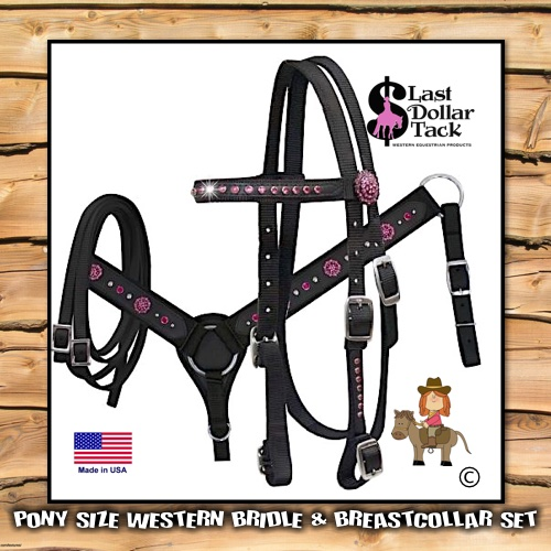 Pony Headstall & Breast Collar Set Black & Pink