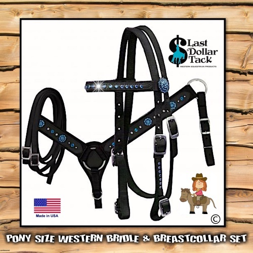 Pony Headstall & Breast Collar Set Black & Teal