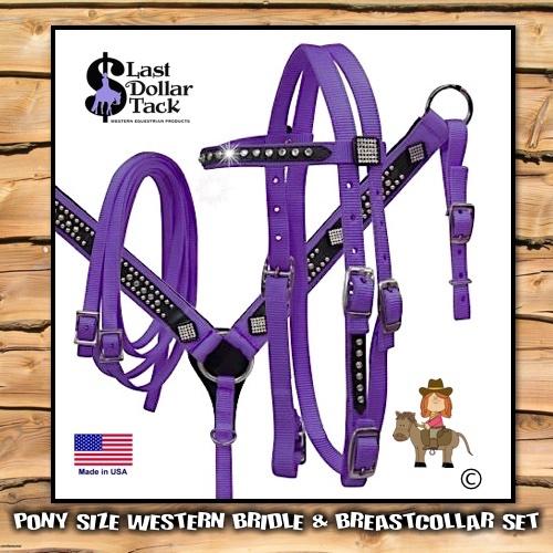 Pony Headstall & Breast Collar Set Purple