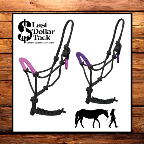 Horseman's Halter & Rope Set Purple Braid Nose
