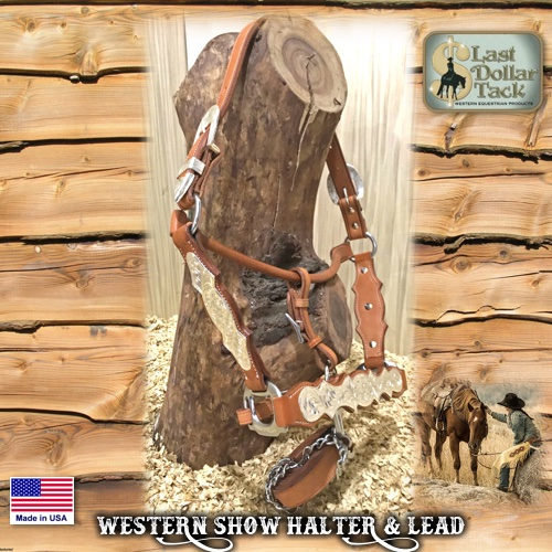 Show Halter & Lead Premium Chestnut Leather Silver Engraved Hardware